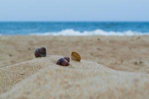 beach-2795216_1280 (Copy)