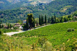 tuscany-2678077_1920 (Copy)